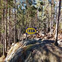 La zi pe Metropotam - Ce inseamna cuvintele in suedeza care denumesc produsele IKEA