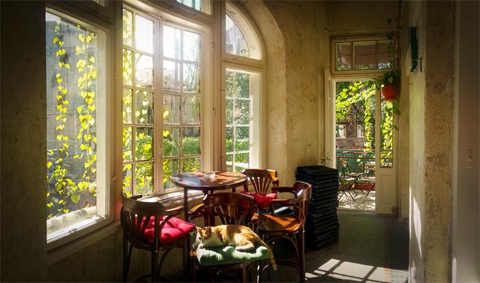 Dianei 4 - spatiul social si cultural cu o noua terasa cocheta si incarcata de flori