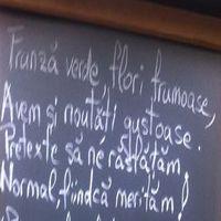 Cronici Ceainarii din Romania - Escapes Cofe&Pub - locul intim din apropierea Cismigiului unde nu se fumeaza