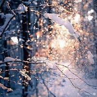 Utile - Vremea se va inrautati in toata tara - va ninge in Bucuresti