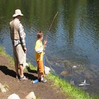 Cronici Terase din Romania - 20 de balti unde putem pescui langa Bucuresti