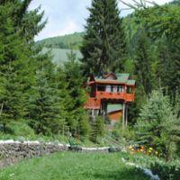 Locuri de vizitat - Idee de vacanta: Cabana Hadar, vila unde pe vremuri Ceausescu vana ursi si mistreti