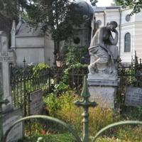 Cronici Alte locuri din Bucuresti, Romania - Cimitirul Bellu va fi transformat in muzeu in aer liber