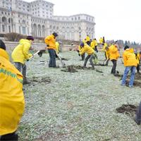 50 de activisti Greenpeace au sapat dupa aur in curtea Casei Poporului