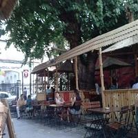 Cronici Terase din Romania - La Copac - carciuma de jupani din centrul Bucurestiului unde te simti ca la tara