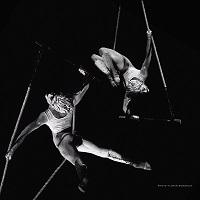 Cronica: Varekai - Cirque du Soleil - gratie in padurea fermecata