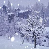 Utile - Iarna se intoarce in forta - de cand revin ninsorile in toata tara