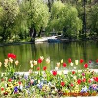 Utile - A inceput marea curatenie in parcurile din Bucuresti
