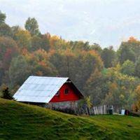 Locuri de vizitat - Idee de vacanta: Satul Prunilor, destinatia perfecta pentru evadarea de weekend din Bucuresti