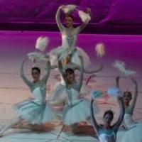 Opera Română mută spectacolele online!