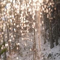 Utile - Vremea se va raci brusc in Romania