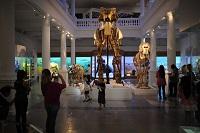Cele mai vizitate muzee din Bucuresti - Barometrul Cultural 2014