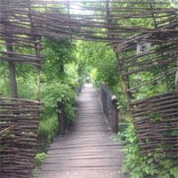 O oaza de liniste si relaxare in mijlocul Bucurestiului: Parcul Venus