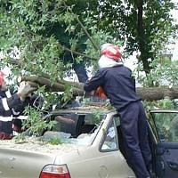 Utile - Primaria Sectorului 6 despagubeste bucurestenii ale caror autovehicule au fost avariate de copacii cazuti in timpul furtunii