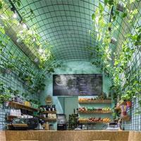 VanFruct Campineanu - locul plin de plante cu gauffre delicioase si bauturi sanatoase