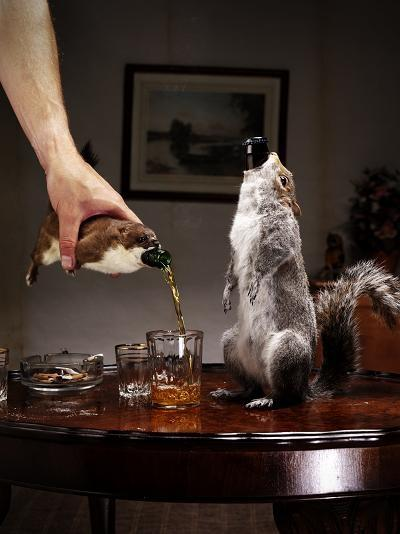 brewdog_taxidermy211_534.jpg