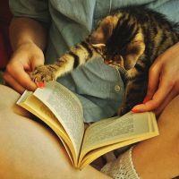 Carti pe care sa le citesti toamna asta
