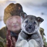 Care este cel mai friguros sat din lume cu temperaturi pana la -71.2C