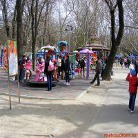 Bucurestenii se pot plimba cu poneii in Parcul Cismigiu incepand cu 11 aprilie