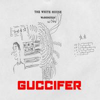 Guccifer, faimosul hackerul roman, risca 7 ani de inchisoare