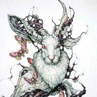 Ilustratii grotesti si feerice care evoca ciclul vietii in lumea animala - de Lauren Marx