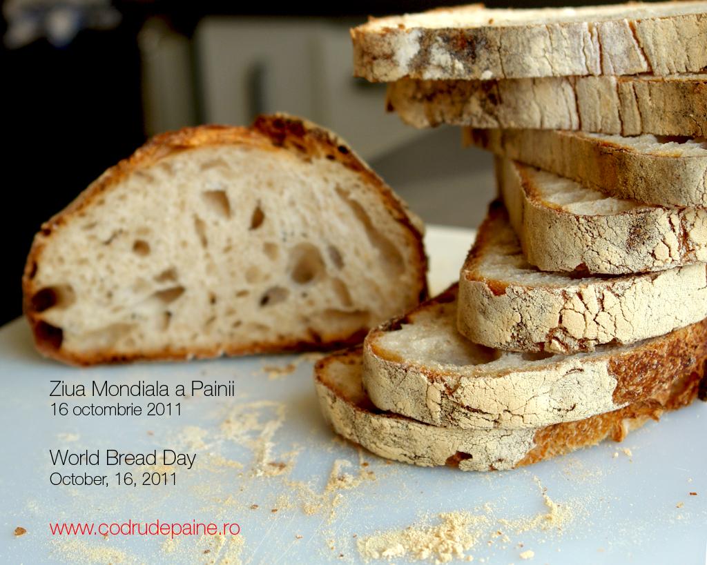 ziua painii