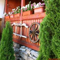 Cronici Restaurante din Romania - Idee de vacanta: Pensiunea Irina, locul traditional si minunat ascuns in muntii Bucovinei