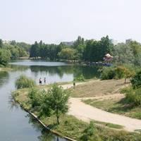 Utile - In Parcul Alexandru Ioan Cuza va fi amplasata o tribuna pentru spectacole